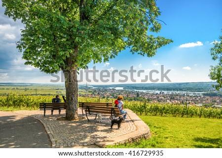 Rheingau - stock photo