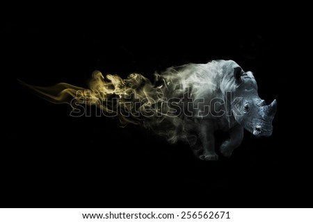 Rhino african safari. animal kingdom. amazing image of a rhino. wildlife picture. great tattoo. beautiful color, zoo - stock photo