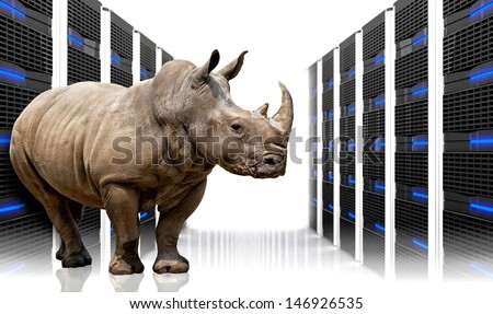 rhino in  datacentre with lots of server - stock photo