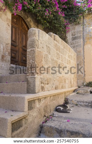 Rhodes old town Beautiful cobblestone street in the old town of Rhodes, Greece  - stock photo