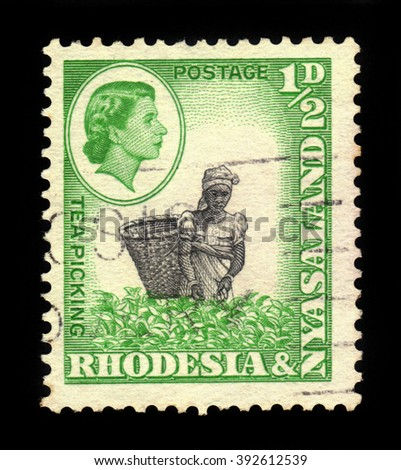 RHODESIA AND NYASALAND - CIRCA 1959: A stamp printed in Federation of Rhodesia and Nyasaland, also known as the Central African Federation (CAF) shows Queen Elizabeth II and tea picking, circa 1959 - stock photo