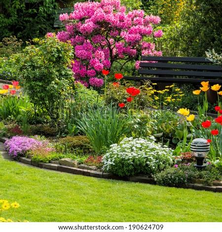 Rhododendron and Garden bench in the spring garden - stock photo