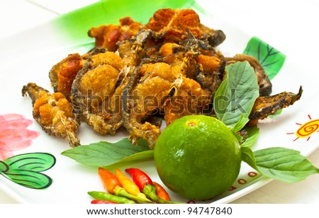 Rice and curry(fried fish) thailand - stock photo