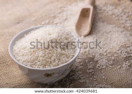 rice and rice grain on jute cloth. jasmine rice. jasmine rice and jasmine rice grain.