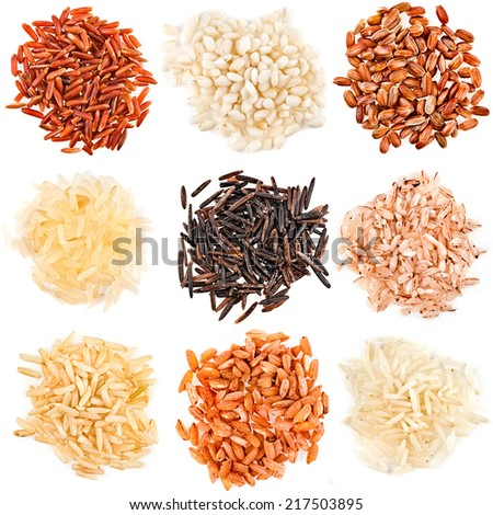Rice collection isolated on white background - stock photo