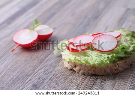 Rice crisp bread and radishes - stock photo