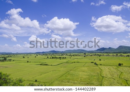 rice field and mountain and blue sky - stock photo