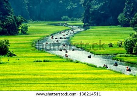 Rice field and river, NinhBinh, vietnam landscapes - stock photo