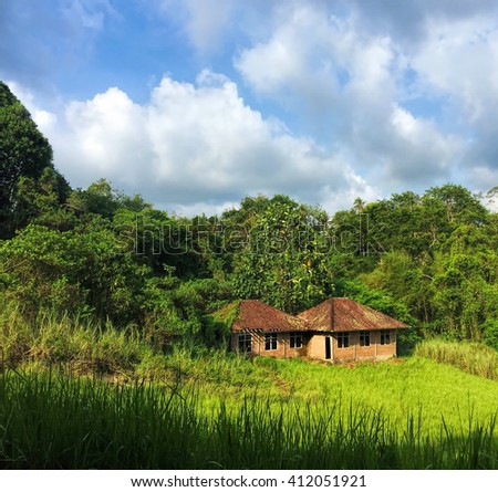 Rice field, blue sky and small house, Idyllic landscape, green rice fields of tropical island, island landscape, peaceful landscape with green jungle, blue sky and beautiful clouds, Bali, Indonesia - stock photo
