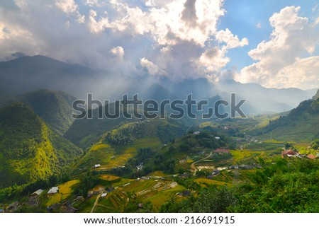 Rice field terraces at Sapa, Vietnam  - stock photo