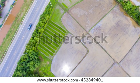 Rice field with road in countryside after rain