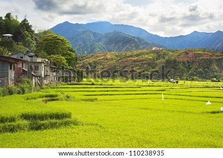 Rice fields in Cordillera mountains, Philippines - stock photo
