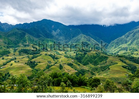 Rice fields on terraced in rainny season at SAPA, Lao Cai, Vietnam