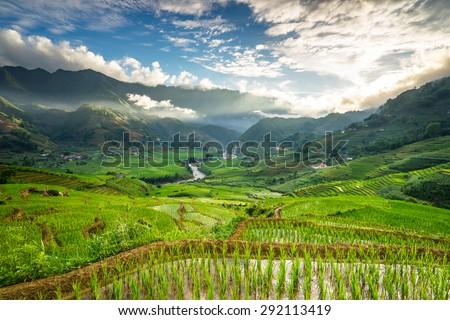 Rice fields on terraced in rainny season at SAPA, Lao Cai, Vietnam. Rice fields prepare for transplant at Northwest Vietnam - stock photo