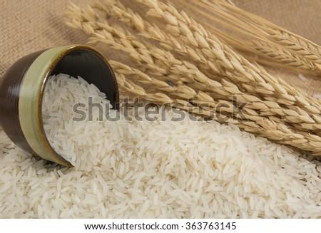 rice grain on table - stock photo