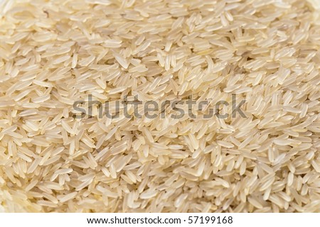 Rice grains - stock photo
