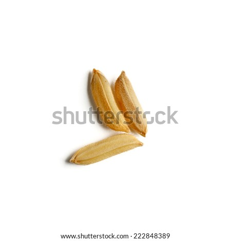 rice grains on white backgroundd - stock photo