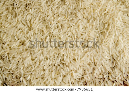 Rice is healthy and wholesome food. From rice it is possible to prepare for many dishes - stock photo