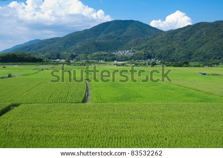 Rice paddies with a mountain in the background, near Kyoto, Japan. - stock photo