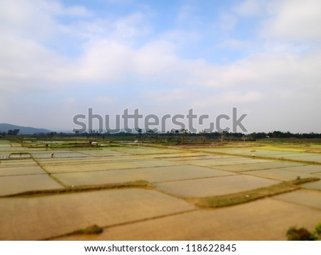 Rice paddy field at Citadel of the Ho Dynasty in Thanh Hoa, Vietnam - a UNESCO World Heritage Site