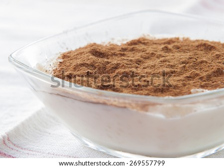 Rice pudding sprinkled with  cinnamon powder in an individual glass bowl. - stock photo