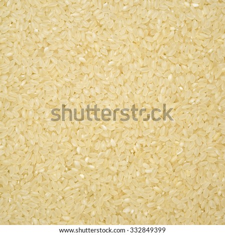 rice raw background - stock photo