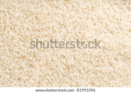 rice raw seed as background