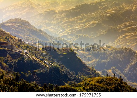 Rice step terrace in the light of late morning at Sa Pa, Lao Cai, Vietnam