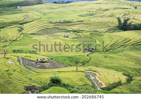 Rice Terraces and village in Laocai, Vietnam