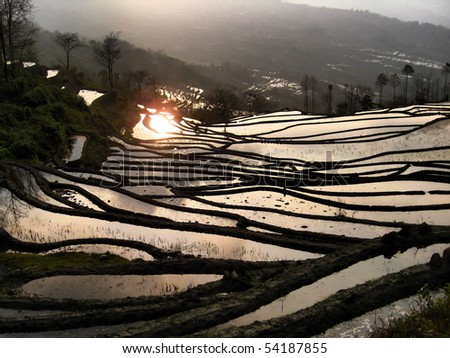 Rice terraces around Yuanyang.