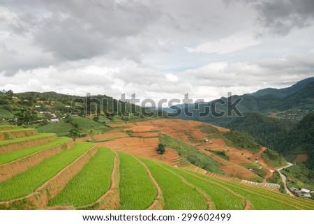 Rice terraces field in Rainning season in Vietnam. - stock photo