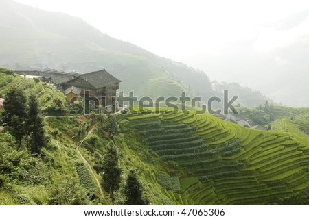 Rice terraces in Longsheng. China. - stock photo