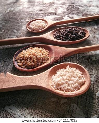 rice varieties : basmati, carolina, brown, wild black - stock photo