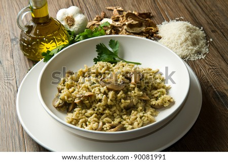 rice with porcini mushrooms - stock photo