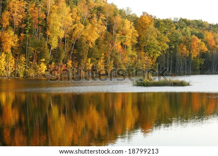 Rich autumn colors thanks in part to setting sun with a visible bald eagle in top left portion of photo taken in Door County, Wisc. - stock photo