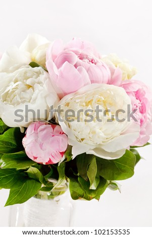 Rich bunch of peonies - stock photo