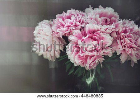 Rich bunch of pink peonies roses flowers, green leaf in glass vase on background. Rustic style. Fresh floral, home decor.  summer. Love . Macro image. Place for text, copy space. - stock photo
