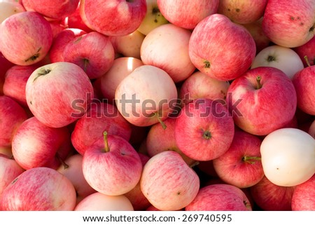 Rich harvest of many ripe red apples closeup view, natural background - stock photo