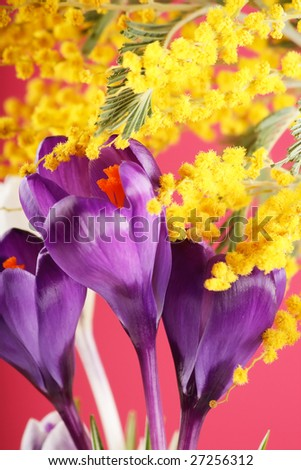 Rich spring flowers background