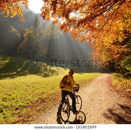 Ride in autumn forest