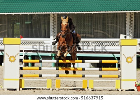 Rider and horse at jumping training