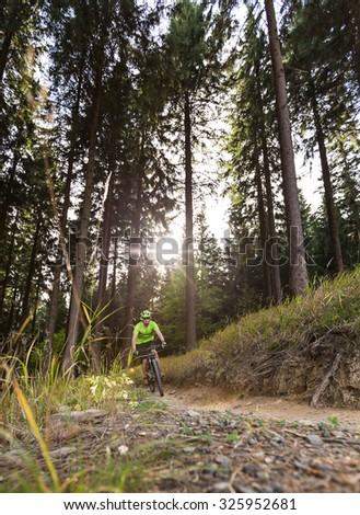 Rider in action at Mountain Bike in forest