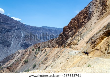 Rider on a horse in Colca Canyon in Peru - stock photo