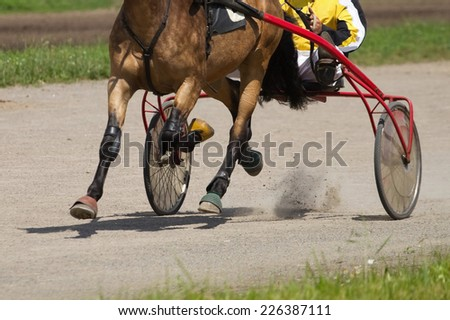 Rider on a horse race on hippodrome - stock photo