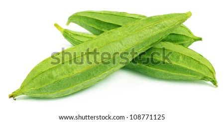 Ridge gourds over white background