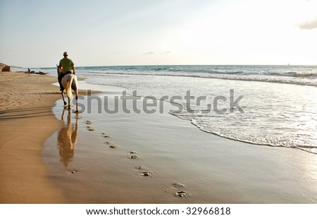 Riding a horse at the beach - stock photo