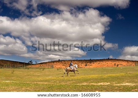 Riding a horse in a meadow with beautiful sky full of clouds