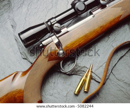 Rifle and bullets close-up - stock photo
