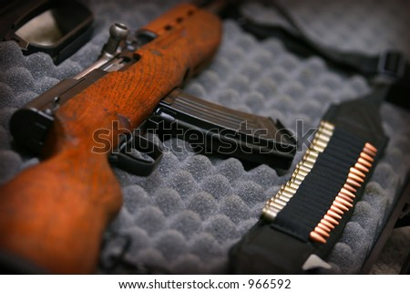 Rifle in eggcrate case - stock photo