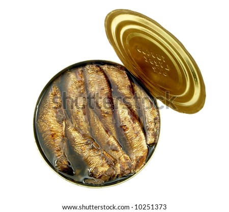 Rigas sprats baked in oil on white background - stock photo